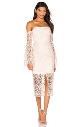 Nicholas Geo Floral Lace Eva Dress Pink