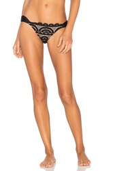 Pilyq Lace Fanned Teeny Bikini Bottom Black