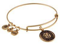 Alex And Ani Rhode Island College Logo Charm Bangle Rafelian Gold Finish Bracelet