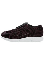 Just Cavalli Trainers Wine Berry
