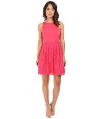Adrianna Papell Sleeveless Lace And Faille Party Peony Women's Dress Pink