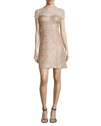 Phoebe Couture Short Sleeve Illusion Jacquard Dress Blush