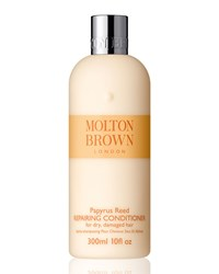 Papyrus Reed Conditioner Molton Brown