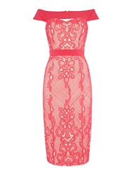 Little Mistress Sleeveless Off Shoulder Lace Overlay Midi Dress Pink