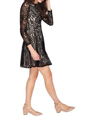 Miss Selfridge Long Sleeve Lace Skater Dress Black