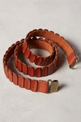 Anthropologie Tabby Belt Brown
