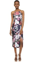 Keepsake Billboard Dress Dark Floral