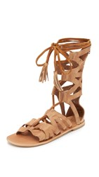Free People Mesa Verde Gladiator Sandals Tan
