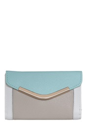 New Look Mel Wallet Mint Green