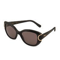 Salvatore Ferragamo Sf819s Signature Sunglasses