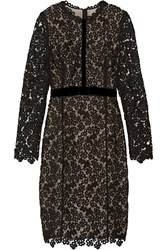 Erdem Cherise Embellished Guipure Lace And Stretch Jersey Dress Black