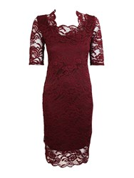 Feverfish Lace Scallop Dress Burgundy