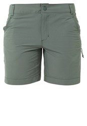 The North Face Exploration Sports Shorts Laurel Wreath Green Oliv