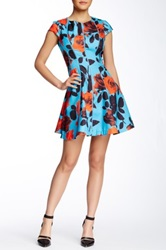 Gracia Rose Print Flare Dress Blue