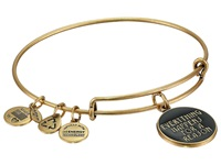 Alex And Ani Everything Happens For A Reason Charm Bangle Rafaelian Gold Finish Bracelet