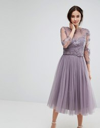 Little Mistress Embroidered Lace Midi Dress With Tulle Skirt Mink Black