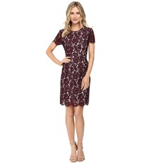 Vince Camuto Short Sleeve Scallop Lace Dress Raisin Women's Dress Brown