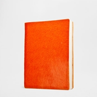 Leather 2015 Diary Diaries And Notebooks Accessories Zara Home United States