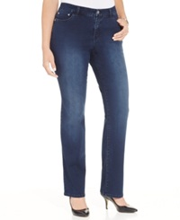 Style And Co. Plus Size Embellished Straight Leg Jeans Brigade