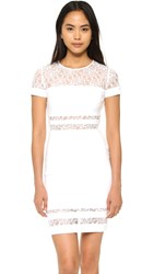 Bailey44 Blossomed Dress Chalk