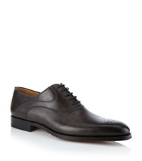 Magnanni Oxford Brogue Male