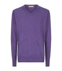 Peter Millar Cashmere V Neck Jumper Male Purple