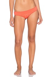 Nightcap Spiral Lace Brazilian Bottom Orange