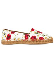 Dolce And Gabbana Daisy And Poppy Print Espadrilles Multicolour