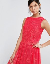 Little Mistress Lace Scallop Hem Top Papaya Red