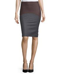 Brunello Cucinelli Colorblock Pencil Skirt Charcoal Fox