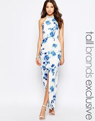 Paper Dolls Tall Floral Print Halter Maxi Dress With Embellished Collar Multi