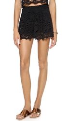 Nightcap Clothing Daisy Crochet Flare Shorts Black
