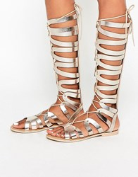 Asos Flyway Leather Knee High Gladiator Sandals Gold