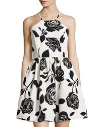 Romeo And Juliet Couture Floral Print Fit And Flare Halter Dress White Black