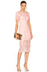 Lover Harmony Sheath Dress In Pink