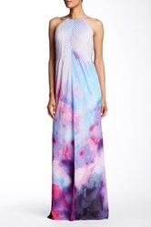 Ted Baker Alexxis Summer At Dusk Print Maxi Dress Gray