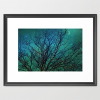 Magical Night Framed Art Print By Sylvia Cook Photography Society6