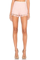 Endless Rose Casanova Short Pink