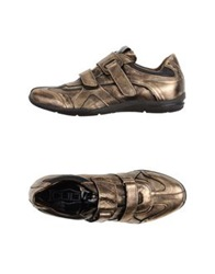Cult Low Tops And Trainers Bronze
