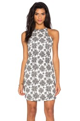 Lucca Couture Brushed Stretch Woven Dress Black And White