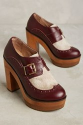 Anthropologie Cubanas Wave Buckle Platforms Wine