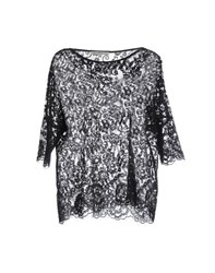Falcon And Bloom Shirts Blouses Women Black