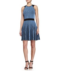 Opening Ceremony Vertical Stripe Flare Dress Moon Blue