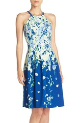 Women's Adrianna Papell 'Garden Party' Stretch Fit And Flare Dress