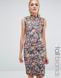 Paper Dolls Tall All Over Floral Printed Lace Pencil Dress Multi