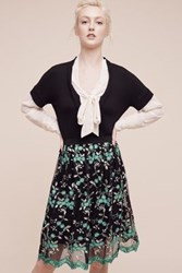 Anthropologie Greenery Lace Skirt