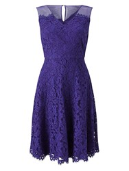 Precis Petite Scarlett Lace Full Skirt Dress Purple