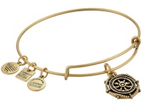 Alex And Ani Charity By Design Take The Wheel Charm Bangle Rafaelian Gold Finish Bracelet