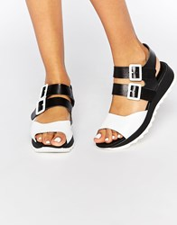 Eeight Carey Black Leather Flat Sandals Black And White