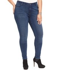 Style And Co. Plus Size Jeggings Punk Wash